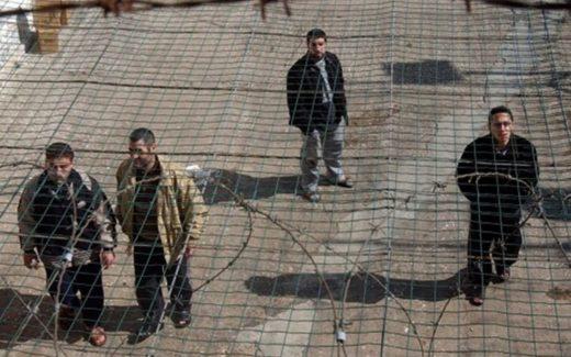 Charlotte Kates : les prisonniers palestiniens représentent la résistance en cours