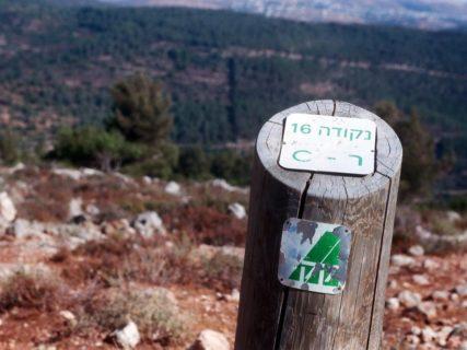 Un piquet marquant la terre qui a été le village d'Al Louz jusqu'en 1948 et qui est gérée actuellement par le Fonds national juif. (Photo : avec l'aimable autorisation de Shabtai Gold)