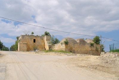 Les ruines de la mosquée d'Ijzim (Photo : Rima Najjar)