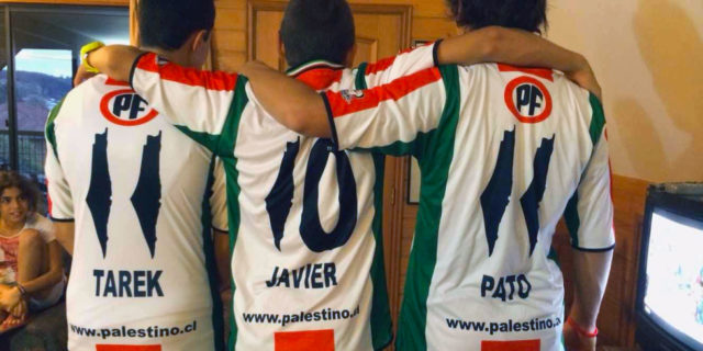 Deportivo Palestino, 2014